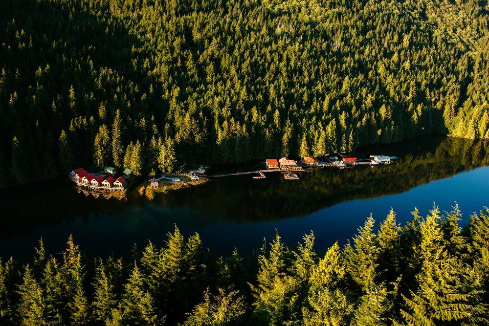 BC: Wilderness & Wildlife Adventure | 4 Days & 3 Nights
