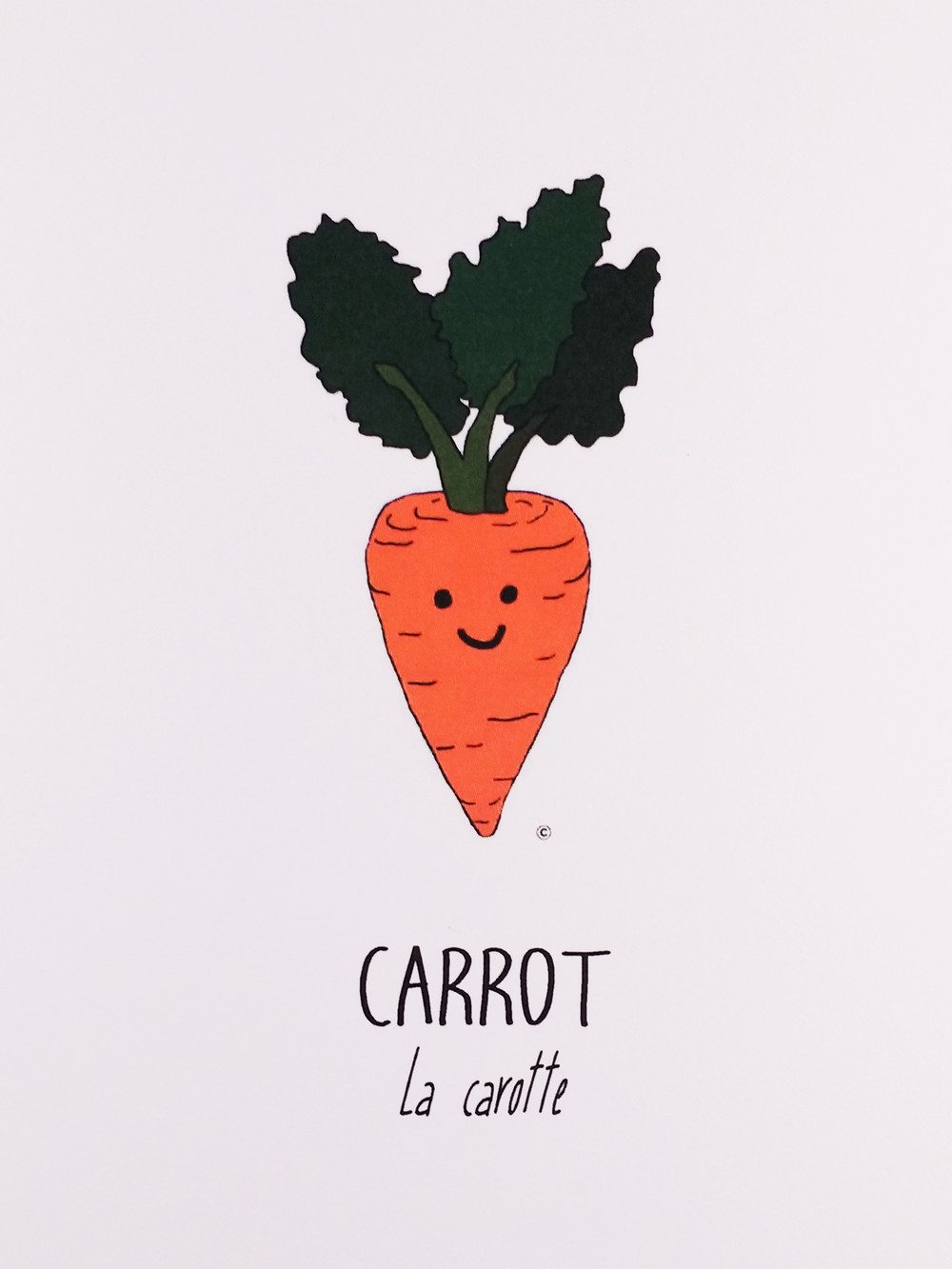 The Carrot Collection