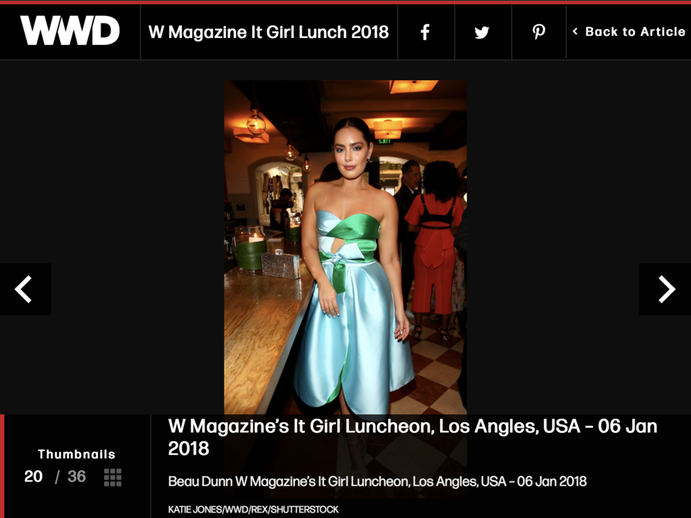 W Magazine It Girl Lunch 2018 – WWD (2018-01-07 17-35-49).png