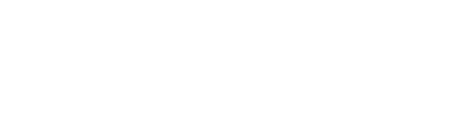 Flying Changes Consulting