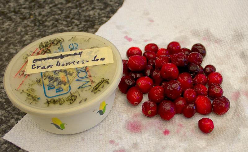 cranberries-3