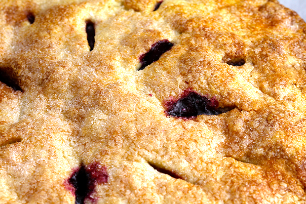 closeup cherry pie