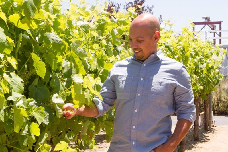 Joe Ibrahim, head winemaker at Willamette Valley Vineyards, crafts some outstanding Pinot Noirs.