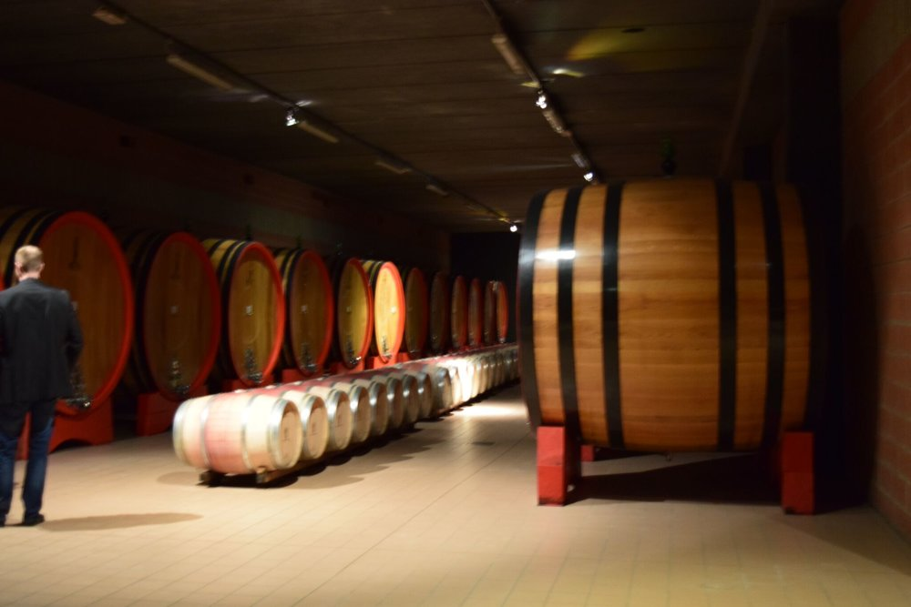 Ciacci barrel room.jpg