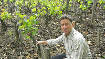 Scott Greer, pictured in the vineyard.
