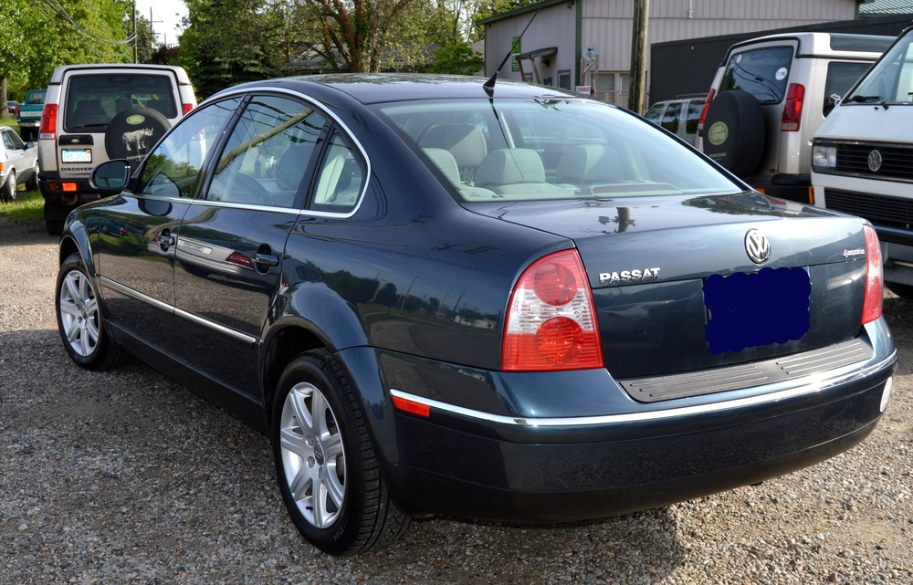 SELLER-04 PASSAT BLUE (TEETS) 004 A.jpg