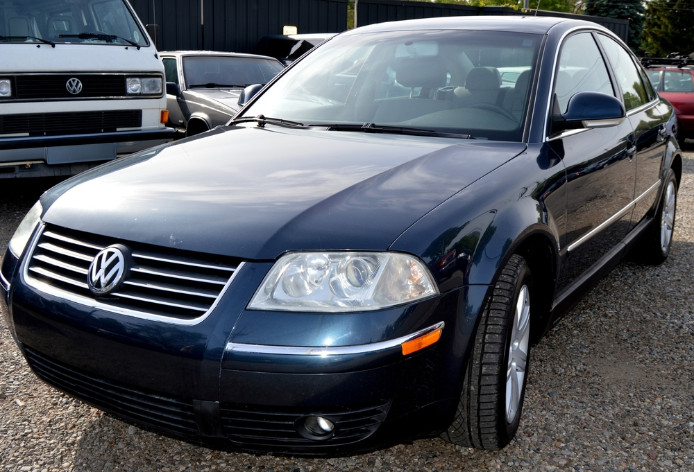SELLER-04 PASSAT BLUE (TEETS) 001 A.jpg