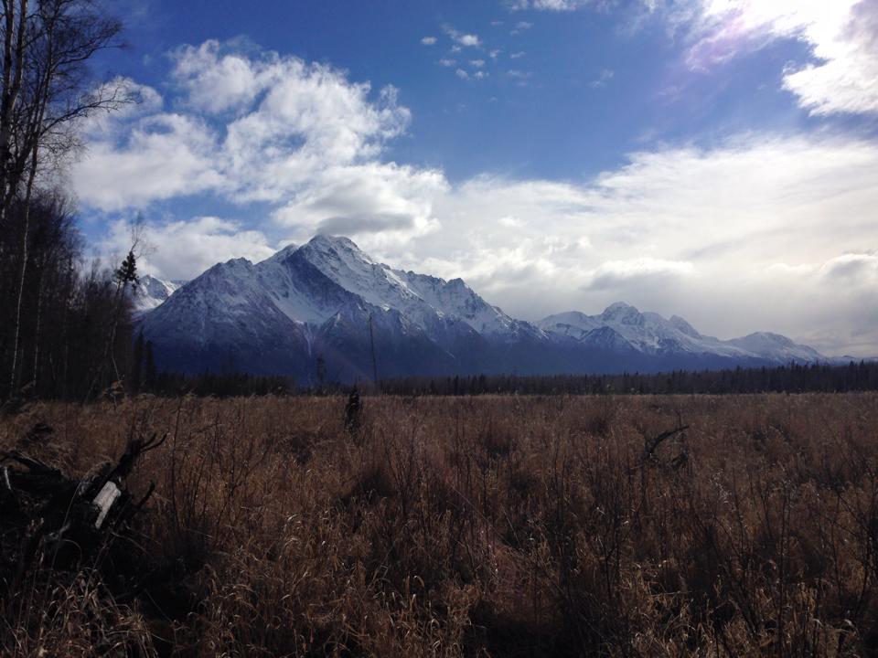Pioneer peak frosty.jpg