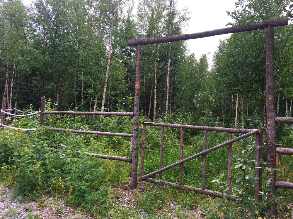 Pasture Gate.jpg