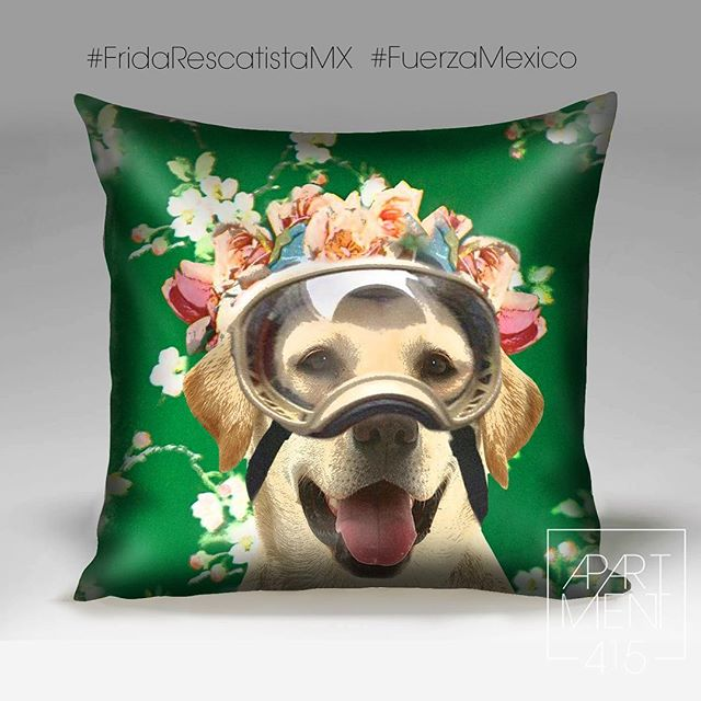 Help us raise money for the furry victims of the earthquake, with your purchase of any pillow we will donate 50% of the profits to animal shelters in Mexico. @fridarescatistamx  @fridakahlo @cdmx_oficial @gobiernocdmx @wdccdmx2018 . . #fuerzamexico #frida #perrosheroes #animalshelters #donate #mexicocity #rescuedogs #mexico #sismo #ayudanos #dogsofinstagram #puppylove #doglovers #fridaperrita #fridaperritarescatista #FridaKahlo #puppysofinstagram #FridaKahlo @voguemexico @vogue @unicef #earthquake  #Mexico @designweekmex