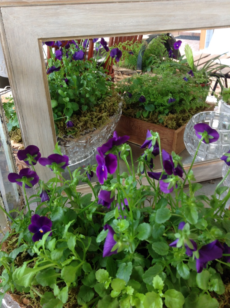 Another Vintage Frame & more potted Containers are then reflected on the Potting Table..