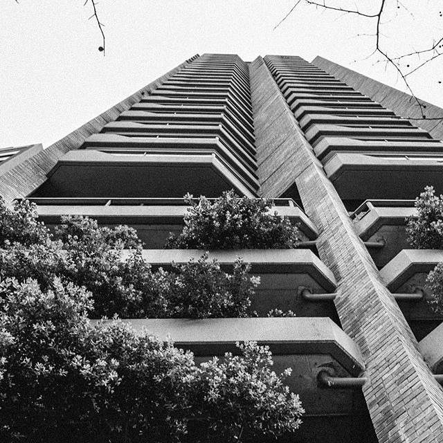 Look up #Sydney #sydneyarchitecture #blackandwhite #photography #photooftheday