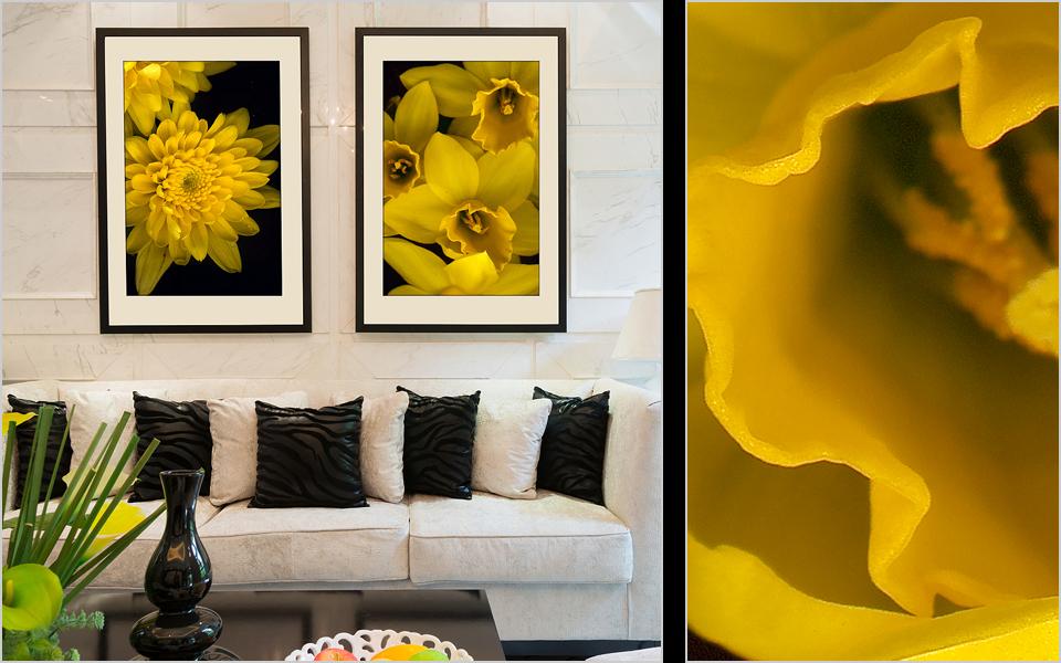 02-yellow.jpg