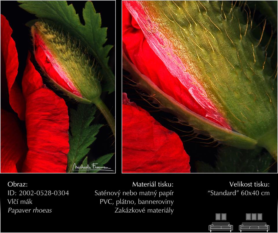 CZ-2002-0528-0304.jpg