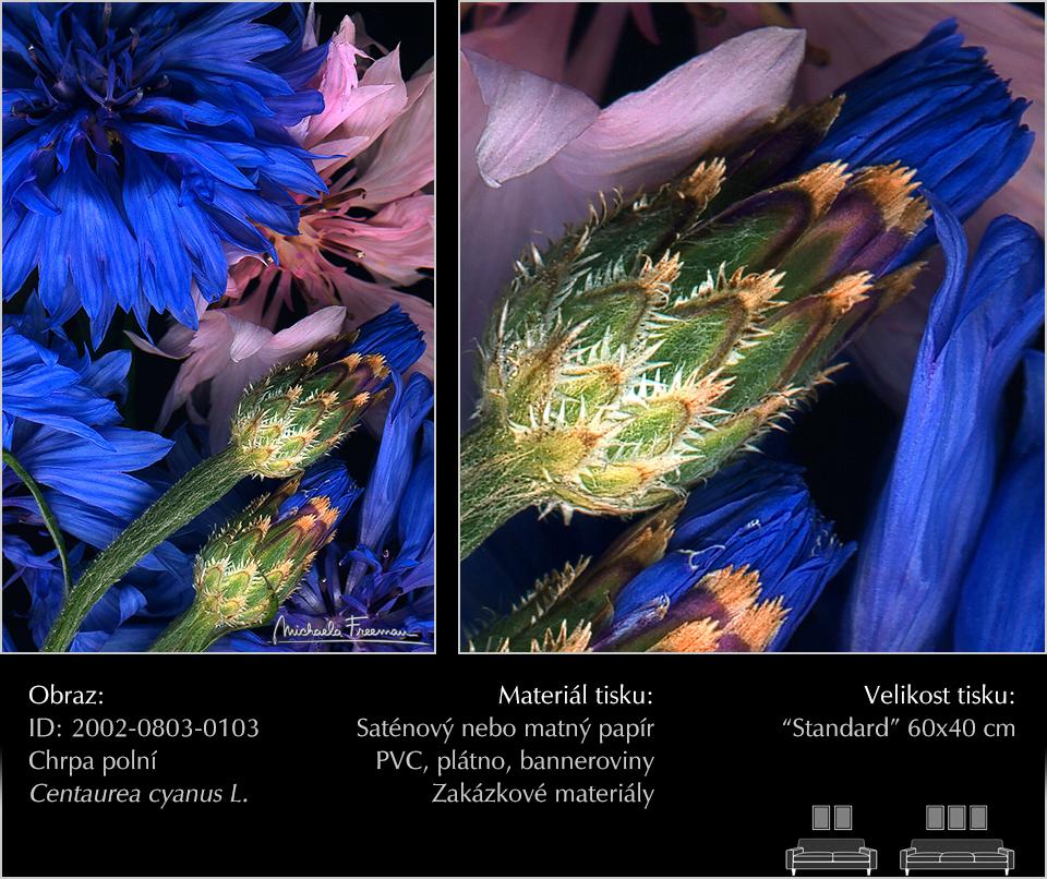 CZ-2002-0803-0103.jpg