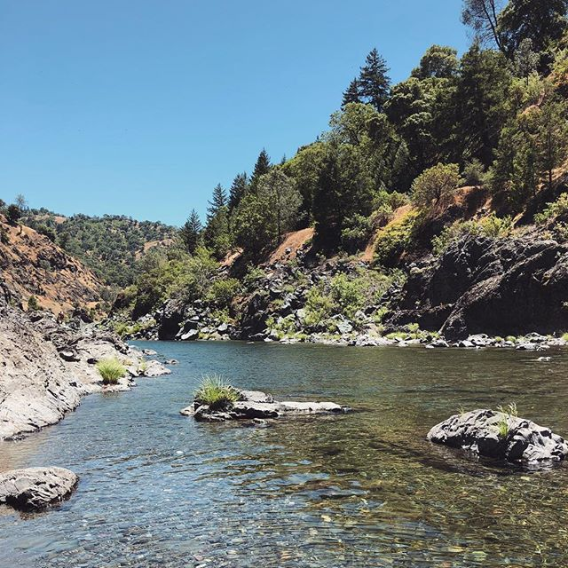 Did anyone else hit the river this weekend!? 🙌🏼 🌞 🌞 #fromfarmtofarmer #mendocinocounty #californiacannabis #californiaadventure #summertime