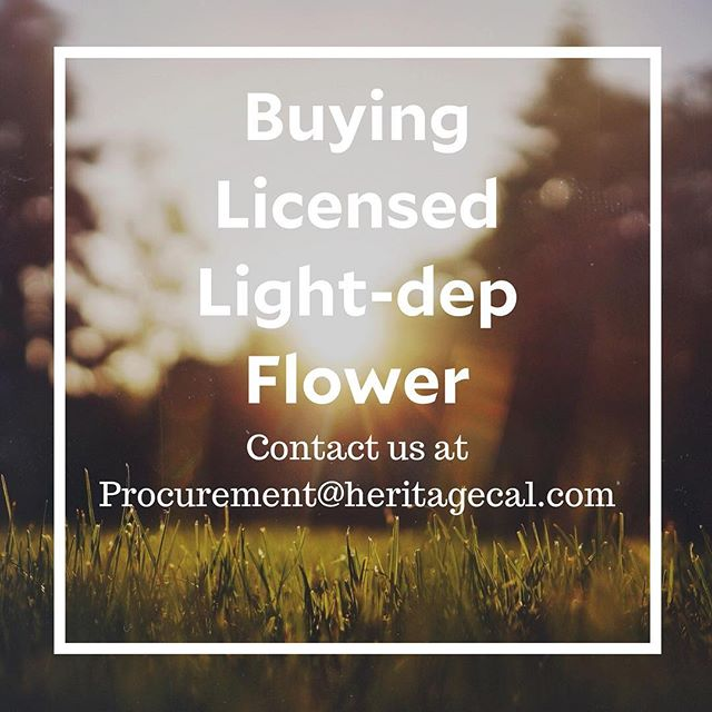 Email us! . . . . . #mendocinocounty #mendogrown #fromfarmtofarmer #californiacannabis #cannabisforthepeople #lightdep
