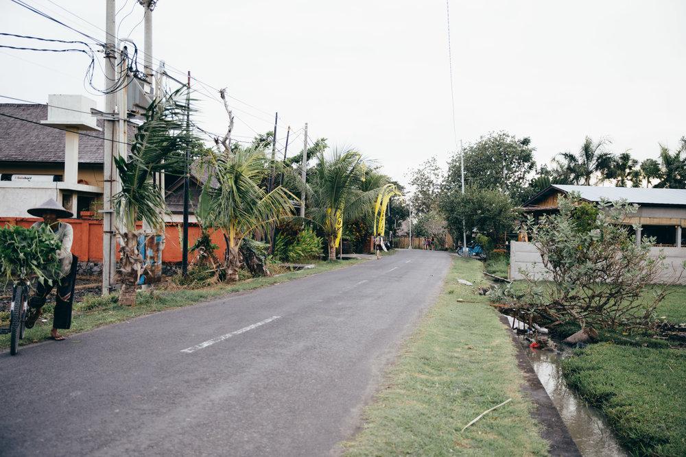 bali2033-1.jpg