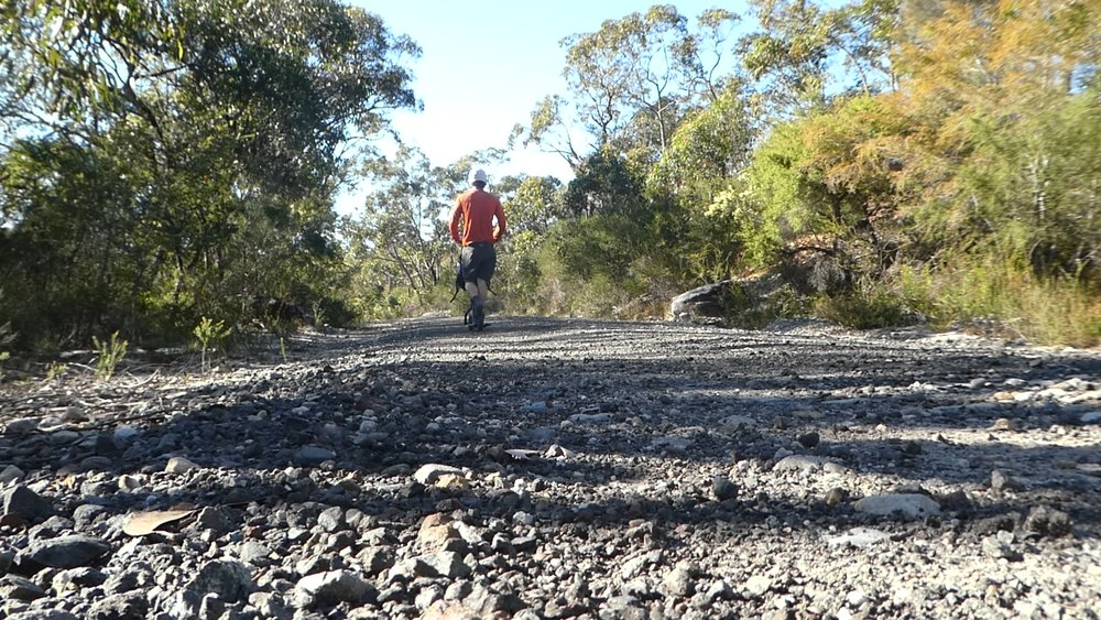 Cracking along down Dillons Firetrail