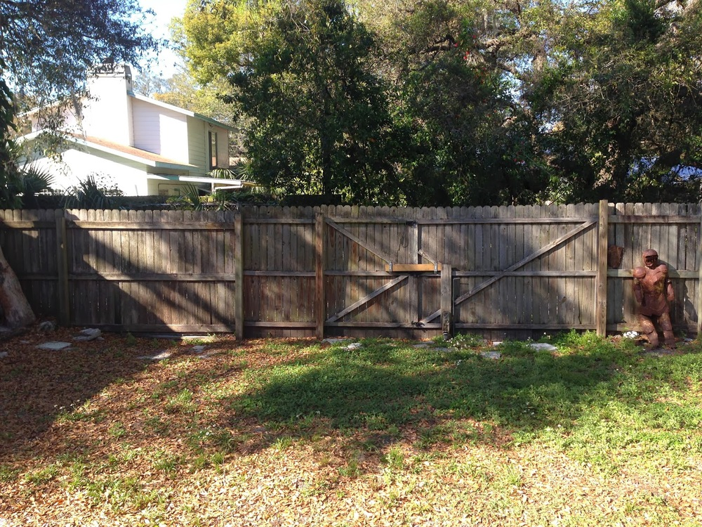 Back+Fence.JPG
