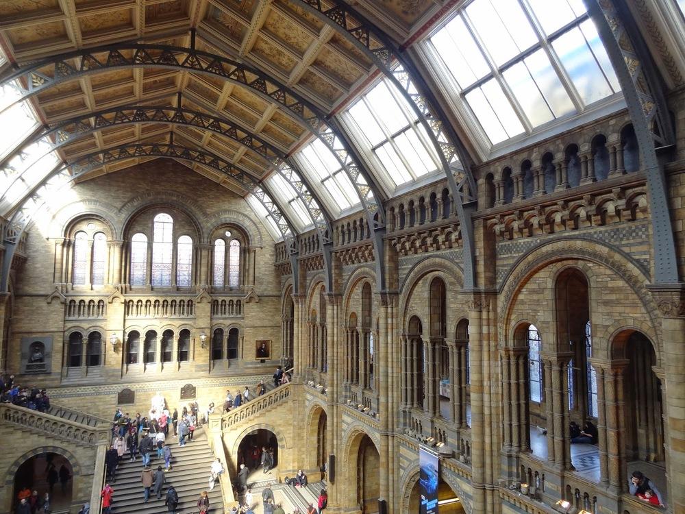 Inside%2BNatural%2BHistory%2BMuseum.JPG
