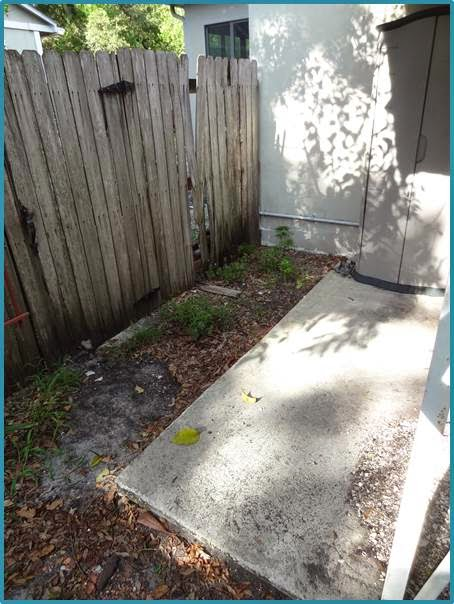 Front+of+Fence+Before.jpg