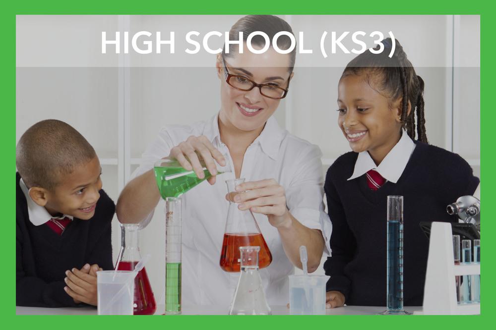 iStock_000017380929_HIGH SCHOOL (KS3).jpg