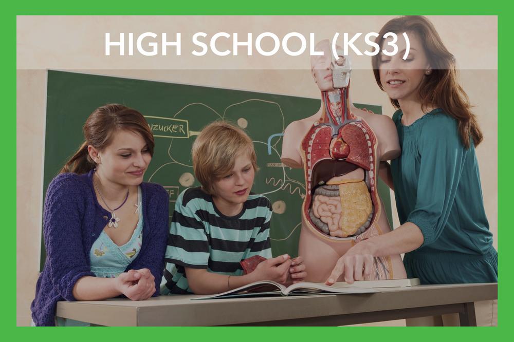 iStock_000057293584_HIGH SCHOOL (KS3).jpg