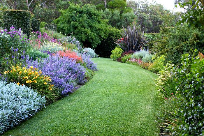 Garden vneyard.jpg