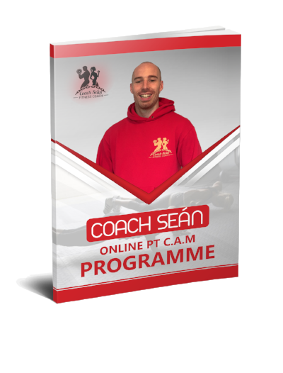 coach sean online pt personal trainer package ebook consistency accountability motivation