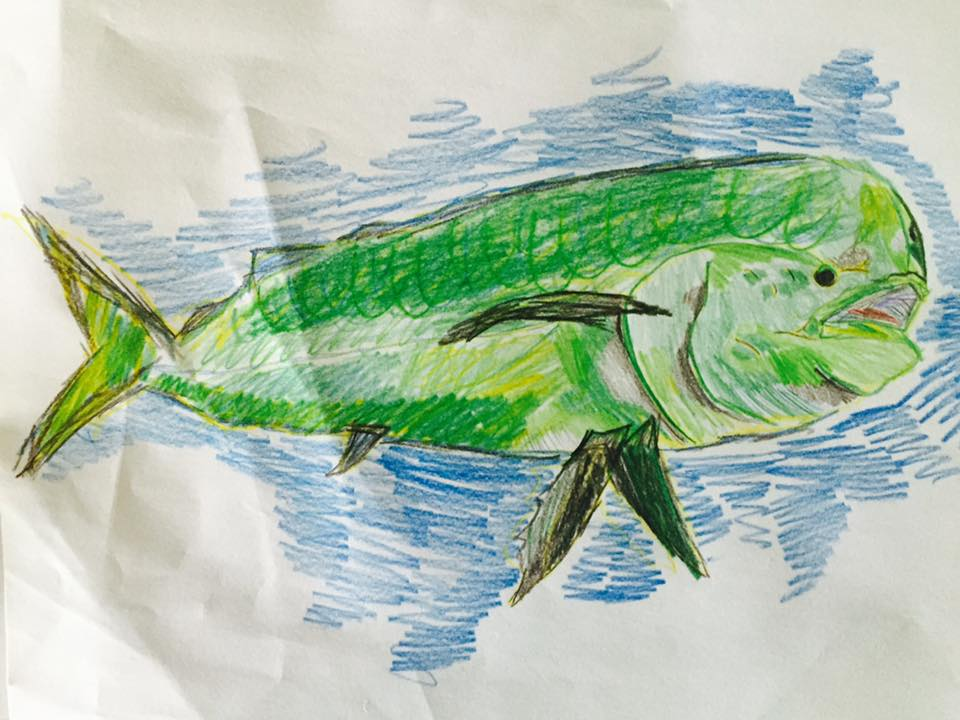 Mahi Mahi by Aidan! If you can't catch one, draw one!