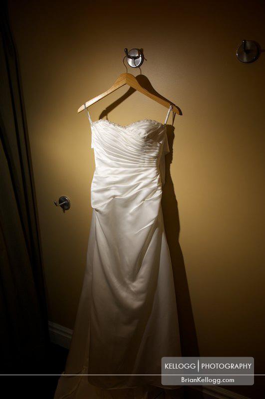 Franklin Park Conservatory Wedding Dress
