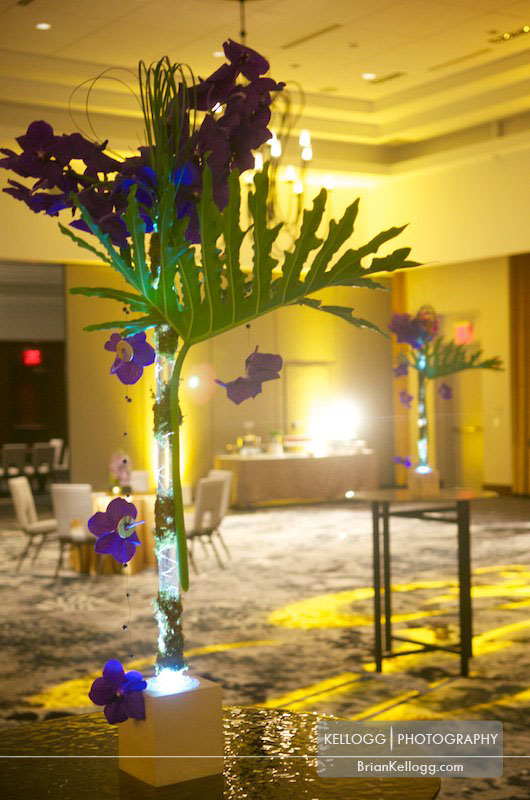 Hilton Downtown Columbus - Wedding Pros of Columbus