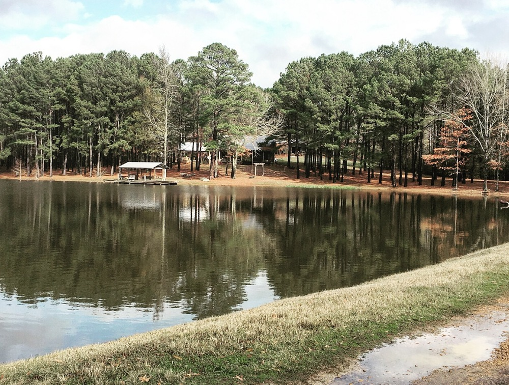 View of the cabin from the entrance of our land in Thomastown, Mississippi.