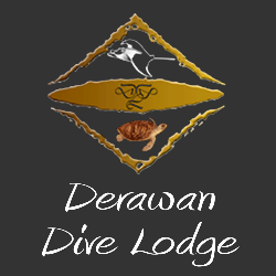 Drawn Dive Lodge