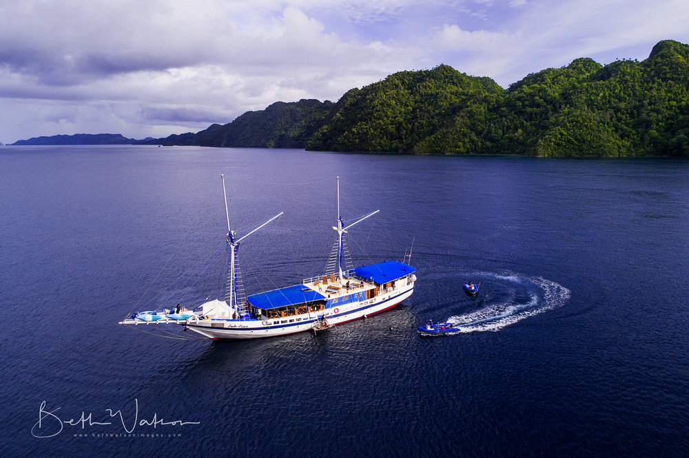 Raja Ampat, Indonesia ~ Siren Fleet ~ Asia Divers