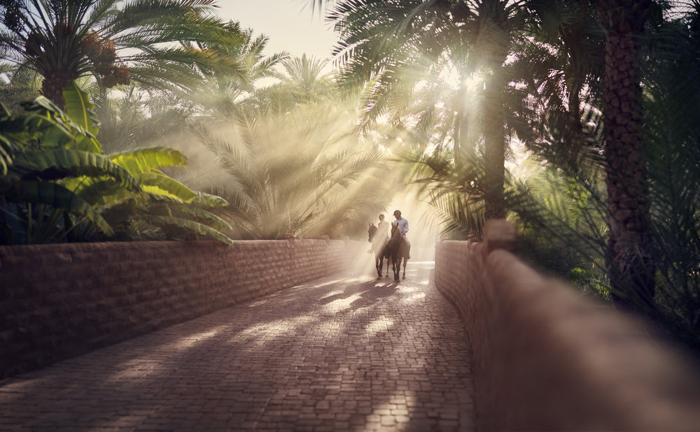 Abu_Dhabi_Al_Ain_Oasis_S1-0496_04b_K.jpg
