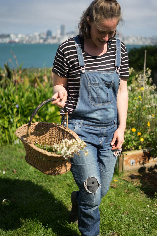 Garden photos by Lindsay Gough @lingough