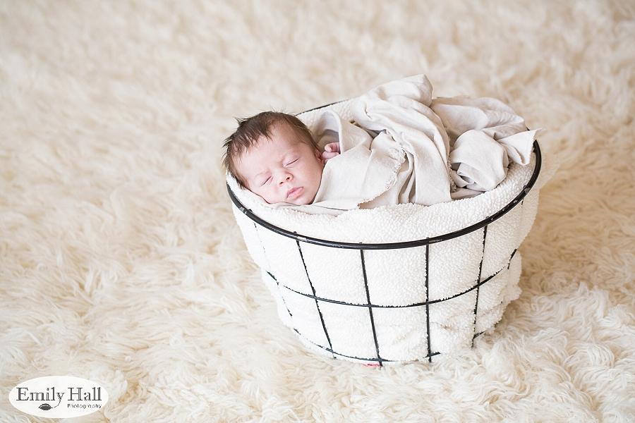 Salem Newborn Photographer-7657.jpg