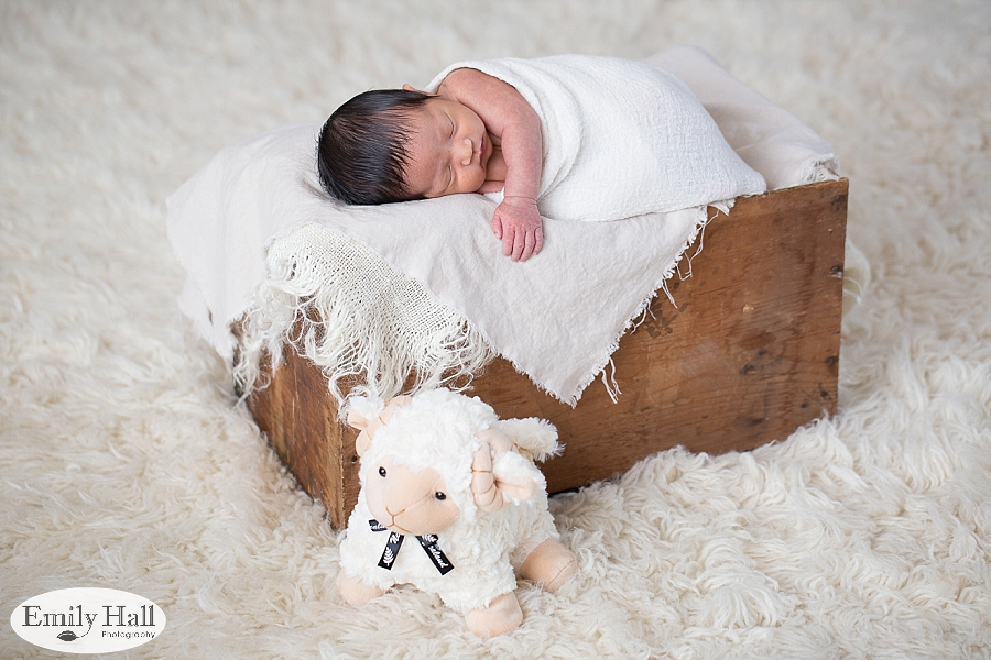 Salem Newborn Photography-8090.jpg