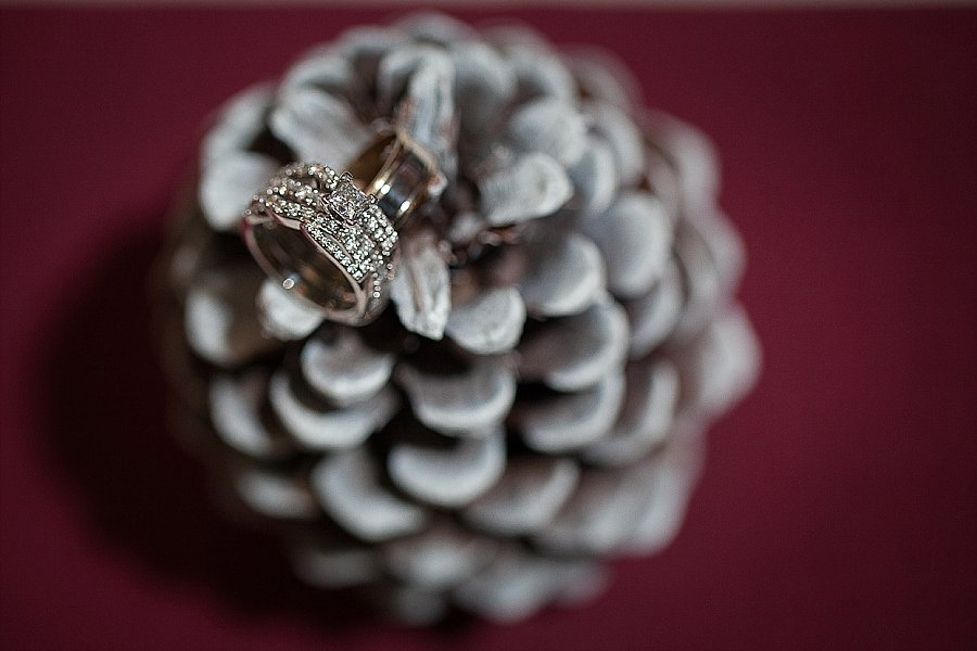 Abernathy Winter Wedding -9269.jpg