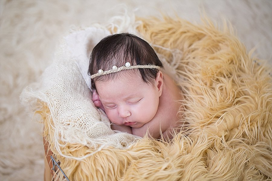Albany Newborn Photographer - Emily Hall Photography-2096.jpg