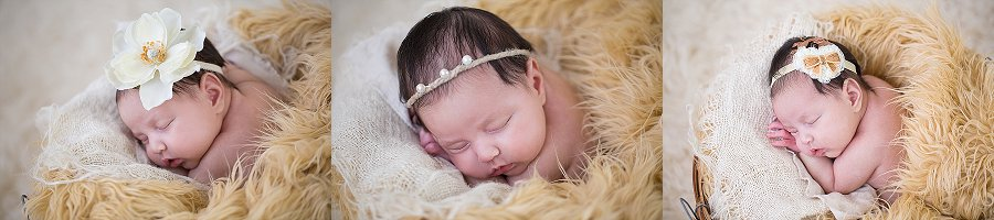 Albany Newborn Photographer - Emily Hall Photography-2111.jpg