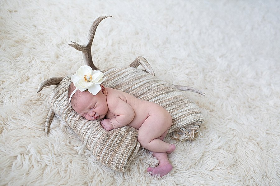 Newborn Portrait Session with Emily Hall Photography-0765.jpg