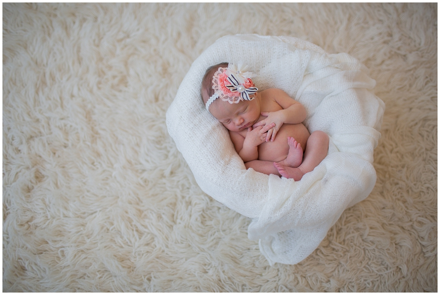 Albany  Newborn Photographer-12.jpg