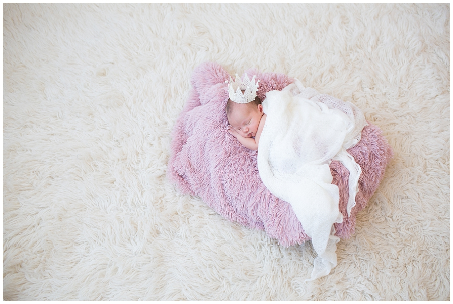 Albany  Newborn Photographer-16.jpg