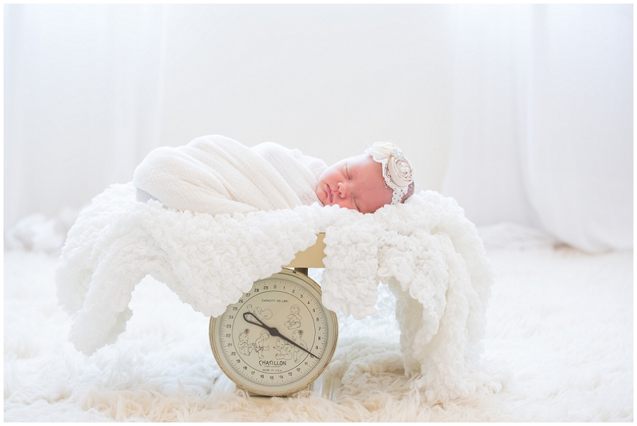 Albany  Newborn Photographer-7.jpg