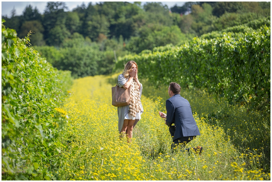 Wedding Proposal at Rex Hill Winery-23.jpg