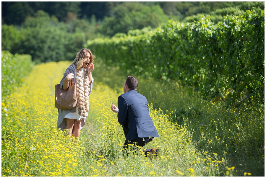 Wedding Proposal at Rex Hill Winery-25.jpg