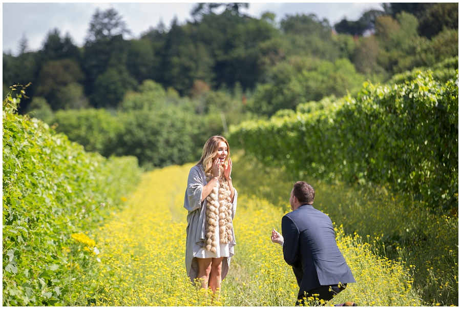 Wedding Proposal at Rex Hill Winery-26.jpg